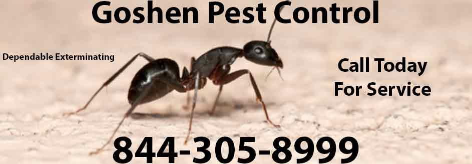 Goshen Pest Control