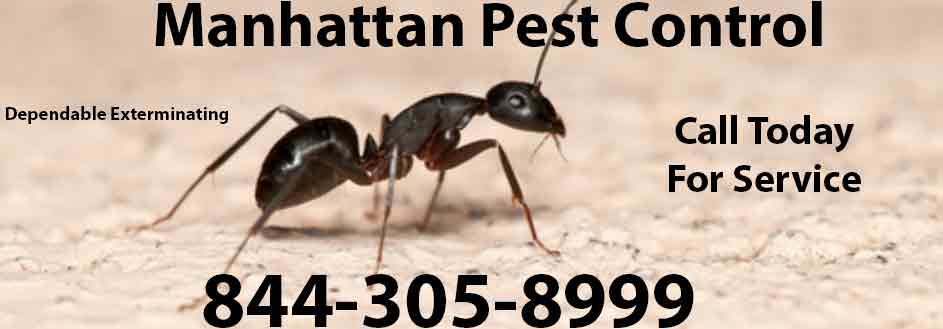 Manhattan Pest Control