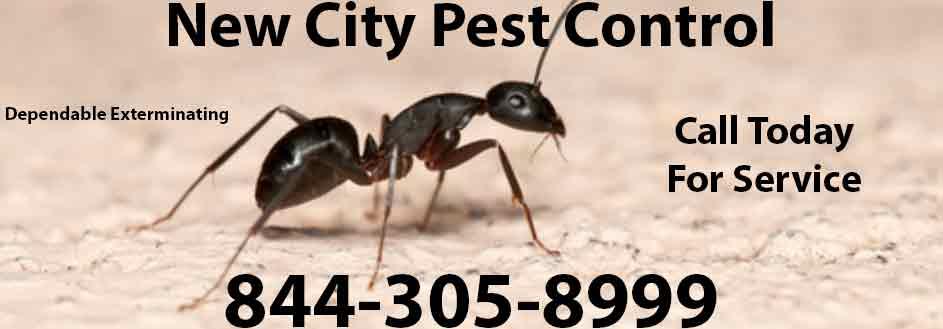 New City Pest Control