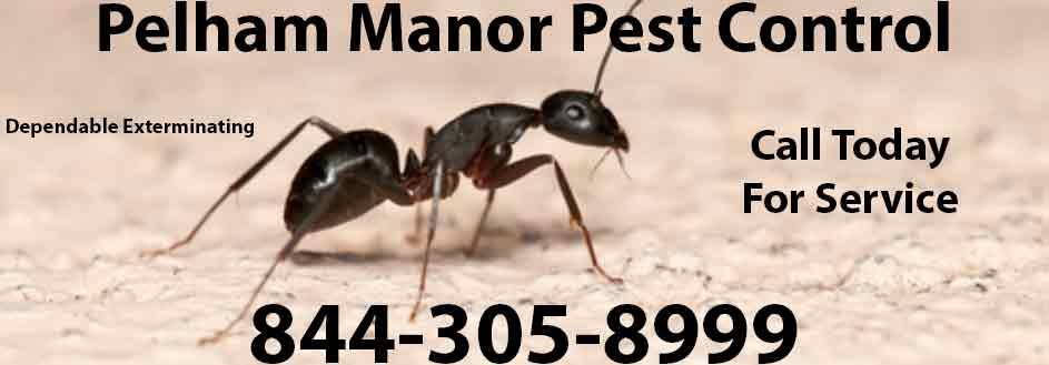 Pelham Manor Pest Control
