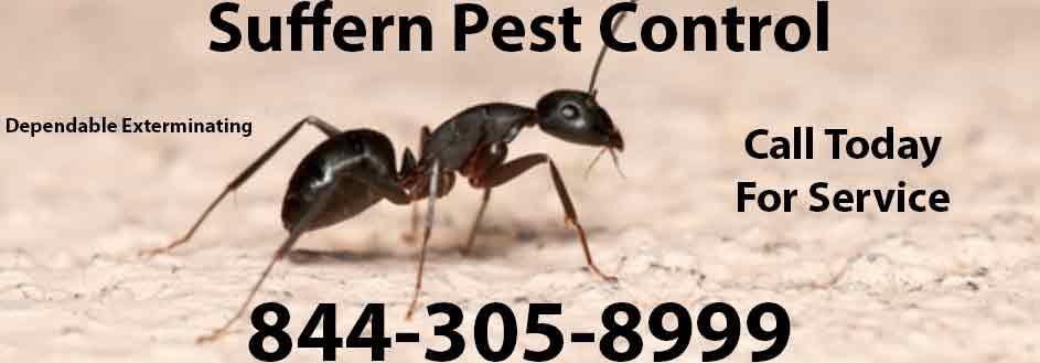 Suffern Pest Control