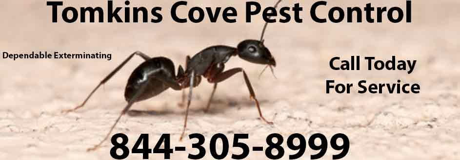 Tomkins Cove Pest Control