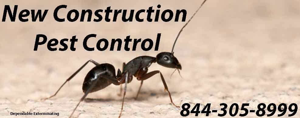 New Construction Pest Control