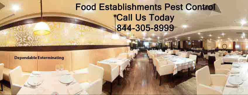 Restaurant Pest Control