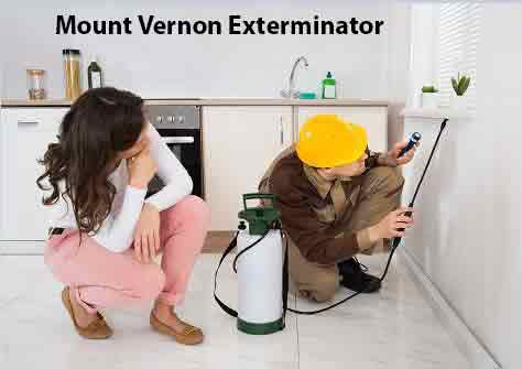 Mount Vernon Exterminator