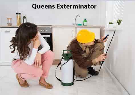 Queens Exterminator