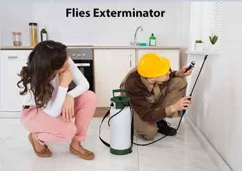 Flies Exterminator
